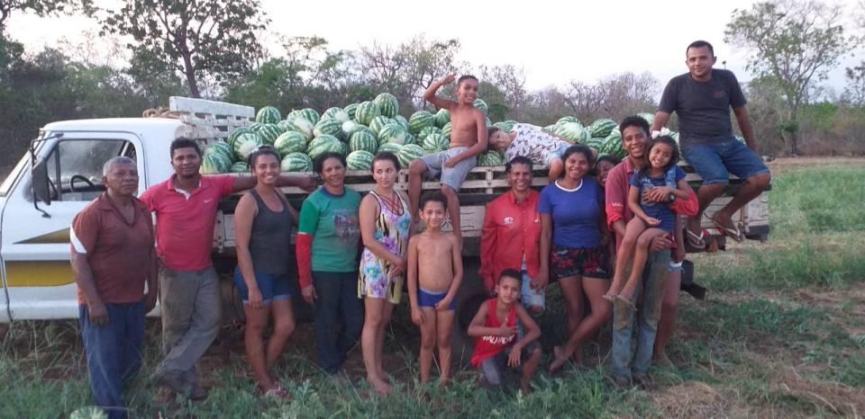 Plantação de melancia no povoado Nova Descoberta, em São Raimundo das Mangabeiras